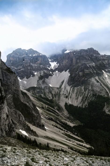HARDY montagnes alpes du sud