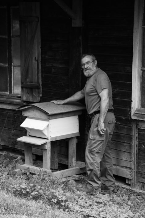apiculture abeille miel vieille homme hymènoptère